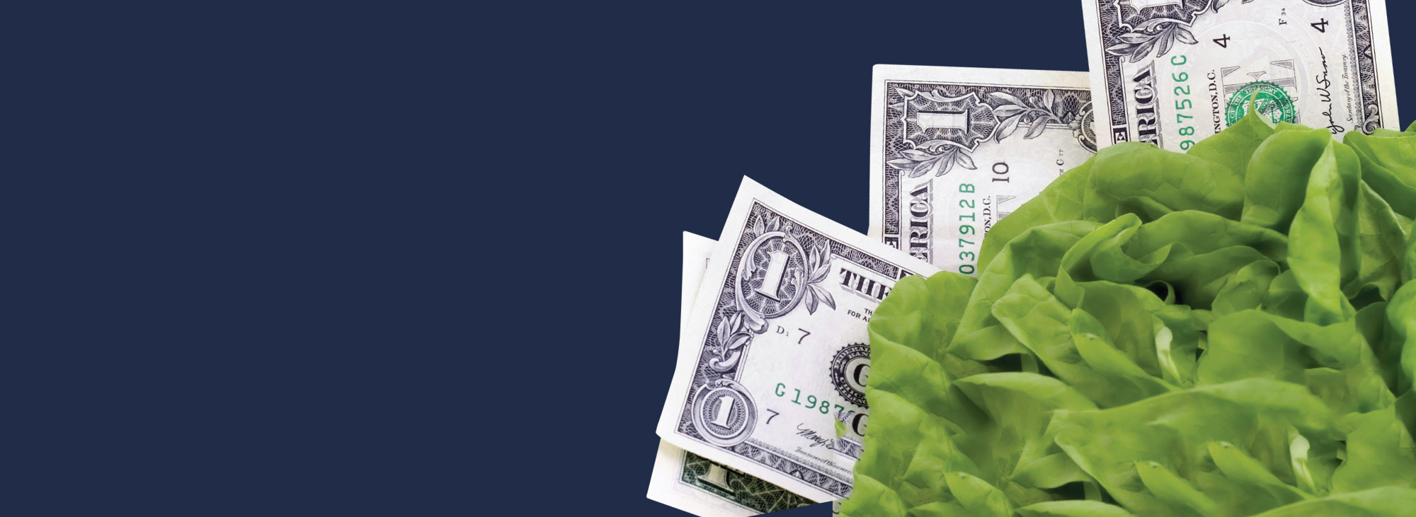 You Keep the Green, <br>Lettuce Pay You